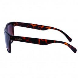 Casual Phoenix Sunglasses with Tortoise Shell Frame, Black